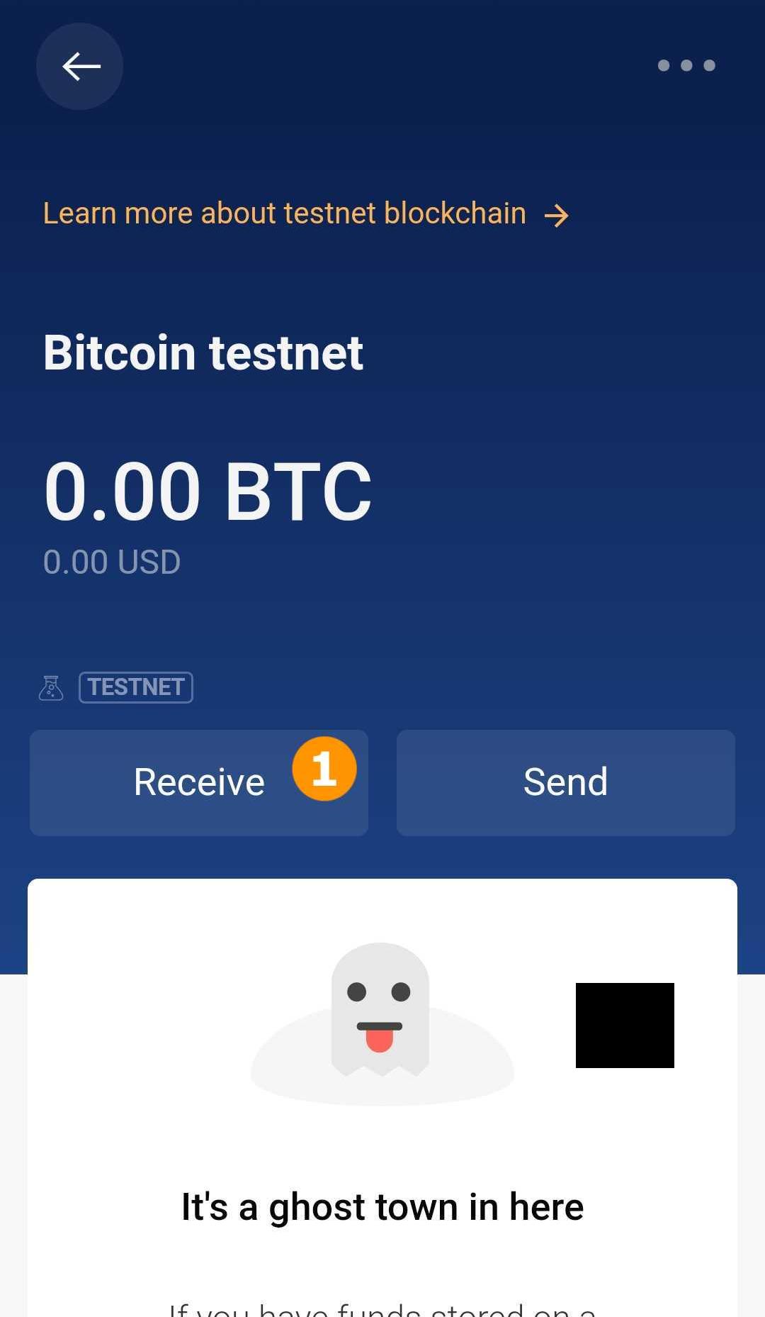 testnet bitcoin adresas